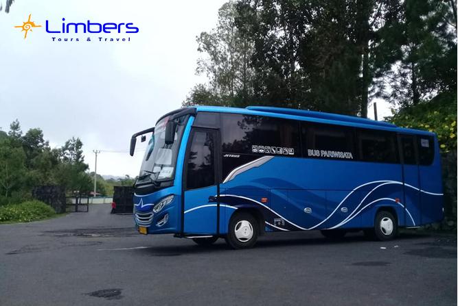 Bus 35seats